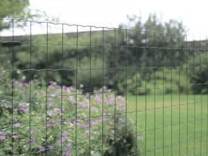 welded-garden-euro-fence
