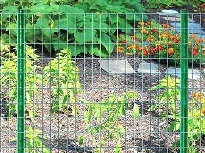 welded-garden-fence-standard